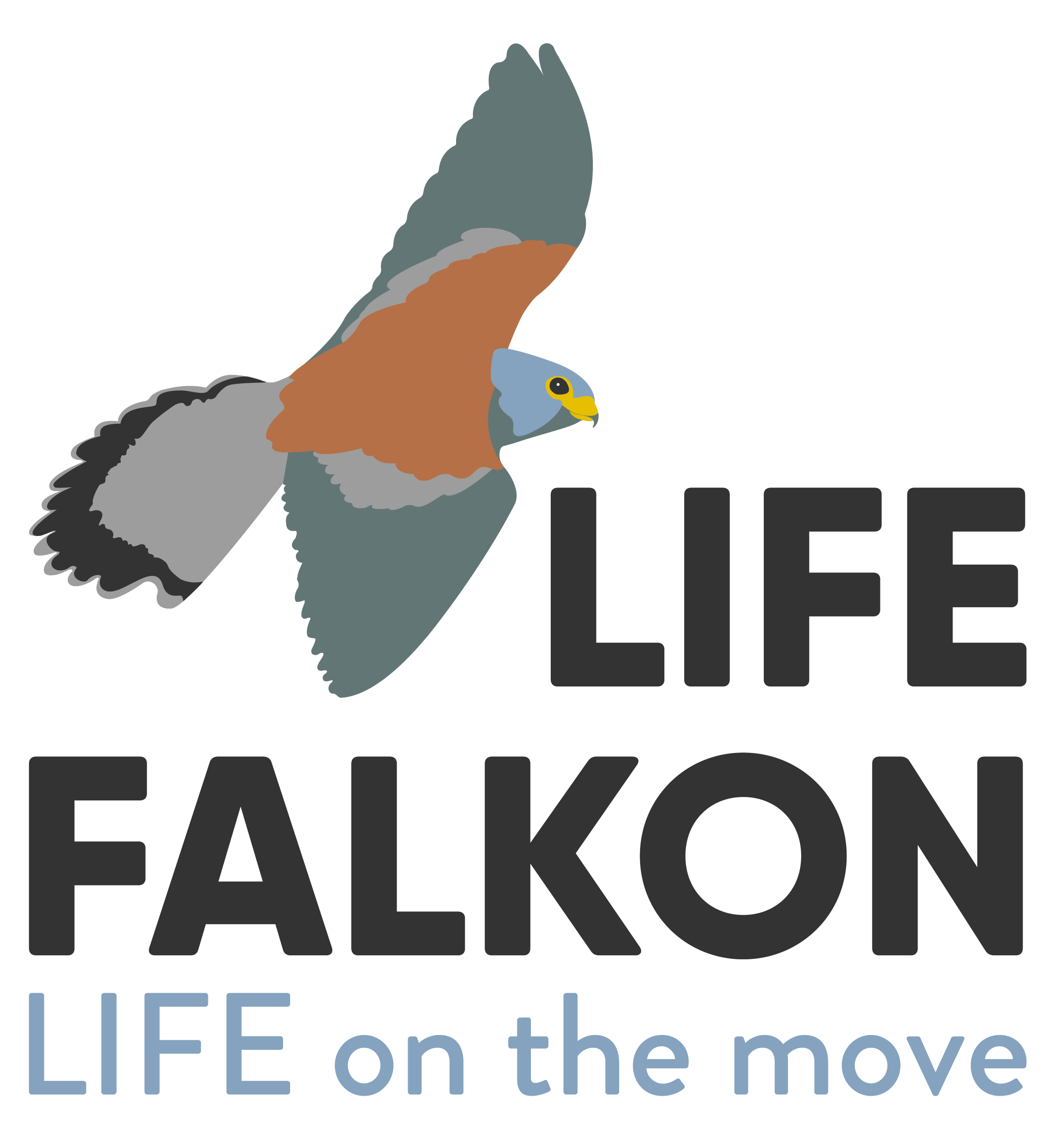 LIFE FALKON  – First Monitoring Visit